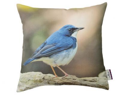 Tom Tailor Zubehör Sofa/Polstermöbel Kissenhülle Bird mit hochwertigem Digitaldruck Motiv Vogel mit Füllung gegen Aufpreis möglich