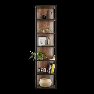 Ideal-Möbel Bacoor Standregal 80 mit sechs Fächern und Stahlprofil Dekor Eiche Ribbeck Cognac und Cosmos Grey Melamin für Wohnzimmer oder Esszimmer