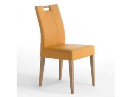 Standard Stuhl Laura aus dem Stuhlsystem Shake it mit oder ohne Griff Polsterstuhl für Esszimmer Gestellausführung und Bezug in Kunstleder wählbar