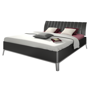 Nolte Möbel Sonyo Bett 2 mit gerundetem Bettrahmen in Graphit und Polster-Rückenlehne mit Kunstleder in Graphit mit Metall-Unterbau in alu-matt Liegefläche ca. 180 x 200 cm