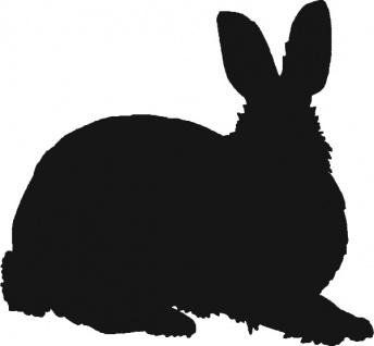 Aufkleber Applikation - Kaninchen - AP1231 - versch. Größen