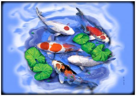 Platzdeckchen - Fisch Koi Koiteich - Gr. ca. 40cm x 28cm - KO266