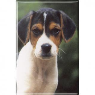 TIERMAGNET - Hunde Welpe - Gr. ca. 8 x 5, 5 cm - 38444 - Küchenmagnet