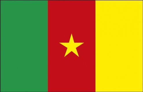 Flagge Stockländerfahne - Kamerun - Gr. ca. 40x30cm - 77076 - Schwenkfahne