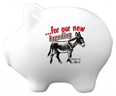 Kermaik Sparschwein - for our new breeding donkey Esel - Esel - 22252