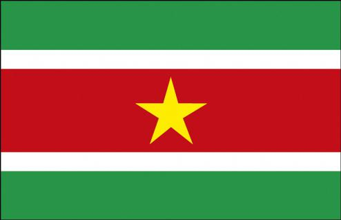 Stockländerfahne - Suriname - Gr. ca. 40x30cm - 77160 - Schwenkfahne mit Holzstock, Flagge, Fahne
