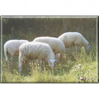 Kühlschrankmagnet - Schafe Schafherde - Gr. ca. 8 x 5, 5 cm - Magnet Küchenmagnet - Vorschau 1