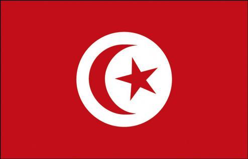 Länder-Flagge - Tunesien - Gr. ca. 40x30cm - 77173 - Flagge, Fahne, Stockländerfahne