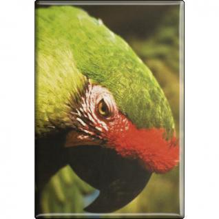 Kühlschrankmagnet - Vogel Papageien - Gr. ca. 8 x 5, 5 cm - 37232 - Magnet Küchenmagnet
