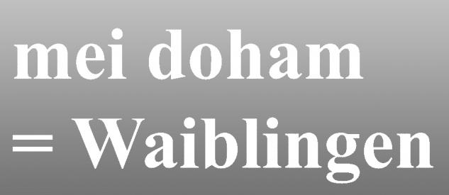 "PVC- Applikations- Aufkleber "" Mei doham= Waiblingen"" 25 cm groß in 8 Farben AP3032 weiß"