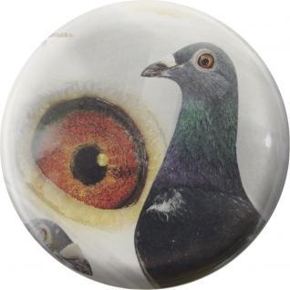 Ansteckbutton ? Taube - Auge - 18203 - Gr. 5, 7cm