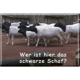 Kühlschrankmagnet - Ziegen - Schwarzes Schaf - Gr. ca. 8 x 5, 5 cm - 38839 - Magnet Küchenmagnet