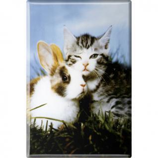 Kühlschrankmagnet - Katze Kätzchen Hase - Gr. ca. 8 x 5, 5 cm - 38445 - Magnet Küchenmagnet