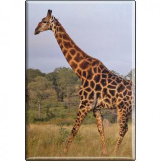 Kühlschrankmagnet - Giraffe - Gr. ca. 8 x 5, 5 cm - 37039 - Magnet Küchenmagnet