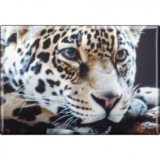 Kühlschrankmagnet - Raubkatze Leoparden - Gr. ca. 8 x 5, 5 cm - 37036 - Magnet Küchenmagnet
