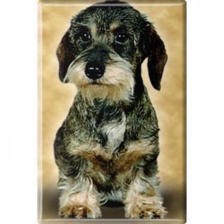 TIERMAGNET - Hunde Welpe - Gr. ca. 8 x 5, 5 cm - 38425 - Küchenmagnet