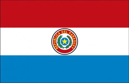 Schwenkfahne mit Holzstock - Paraguay - Gr. ca. 40x30cm - 77128 - Länderflagge, Fahne, Stockländerfahne