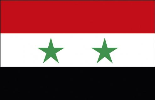 Stockländerfahne - Syrien - Gr. ca. 40x30cm - 77163 - Schwenkfahne mit Holzstock, Flagge, Fahne