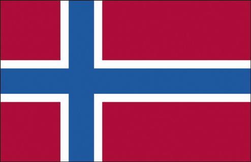 Schwenkflagge mit Holzstock - Norwegen - Gr. ca. 40x30cm - 77123 - Flagge, Fahne, Stockländerfahne