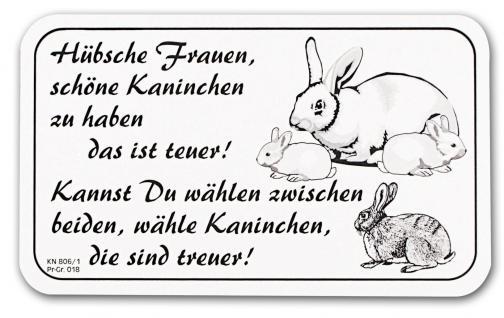 Hinweisschild - Türschild - Spaßschild - Hübsche Frauen..Hühner - Gr. 25x14cm - KN806/1 - Vorschau