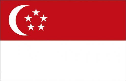 Stockländerfahne - Singapur - Gr. ca. 40x30cm - 77150 - Schwenkflagge, Länderfahne - Vorschau