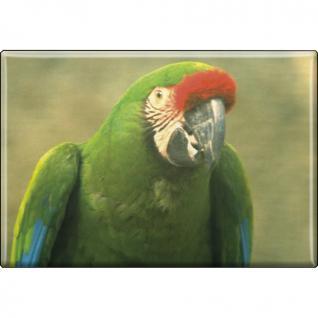 Kühlschrankmagnet - Vogel Papageien - Gr. ca. 8 x 5, 5 cm - 37238 - Magnet Küchenmagnet