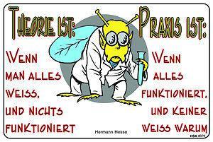 Schmunzelschild - Theorie und Praxis ist... - 308979 - Gr. 30 x 20 cm