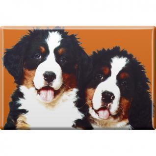 TIERMAGNET - Hunde Welpe - Gr. ca. 8 x 5, 5 cm - 38422 - Küchenmagnet