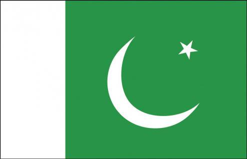 Schwenkfahne mit Holzstock - Pakistan - Gr. ca. 40x30cm - 77129 - Flagge, Länderflagge, Stockländerfahne