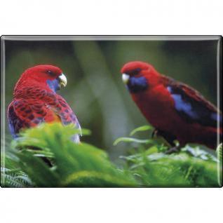 Kühlschrankmagnet - Vogel Papageien - Gr. ca. 8 x 5, 5 cm - 37235 - Magnet Küchenmagnet