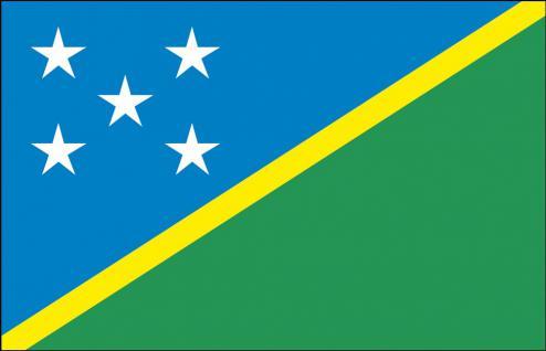 Länderfahne - Salomonen - Gr. ca. 40x30cm - 77139 - Schwenkflagge mit Holzstock, Stockländerfahne