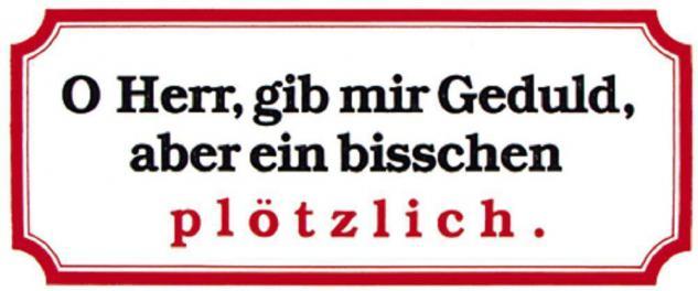 PVC Aufkleber Fun Auto-Applikation Spass-Motive und Sprüche - Oh Herr... - 303355 - Gr. ca. 17 x 8 cm