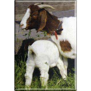 TIERMAGNET - Ziegen Kitz Zicklein - Gr. ca. 8 x 5, 5 cm - 38532 - Küchenmagnet