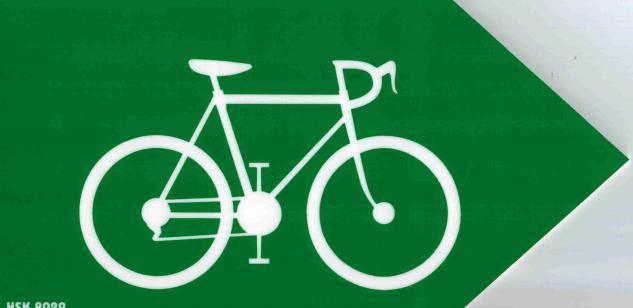 Schild - Fahrrad - Pfeil - Gr. 19 x 9, 5 cm - 308029 - Vorschau