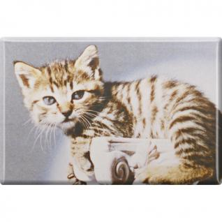 Kühlschrankmagnet - Katze Kätzchen - Gr. ca. 8 x 5, 5 cm - 38448 - Magnet Küchenmagnet - Vorschau 1
