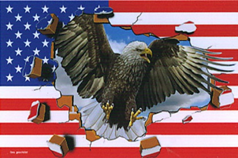 Flagge mit Motiv - USA Adler - Gr. 150cm x 90cm - 24301 - Dekoflagge
