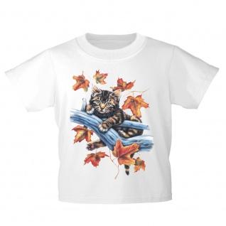 Kinder T-Shirt mit Print Cat Katzen Herbstkatze KA156/1 Gr. 110-164