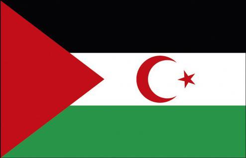 Schwenkfahne mit Holzstock - Westsahara - Gr. ca. 40x30cm - 77186 - Flagge, Dekofahne, Stockländerfahne