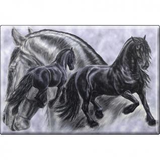 MAGNET - Pferde - Kollektion Bötzel - Gr. ca. 8 x 5, 5 cm - 38545 - Küchenmagnet