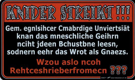 Spaß-Schild - KINDER STREIKT! Rechtschreibreformen - 309271 - 25cm x 15cm - Schule