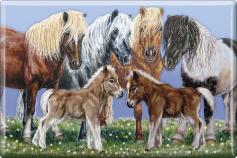 MAGNET - Pferde Isländer - Kollektion Bötzel - 38656 - Gr. ca. 8 x 5, 5 cm - 38656