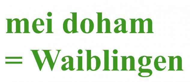 "PVC- Applikations- Aufkleber "" Mei doham= Waiblingen"" 25 cm groß in 8 Farben AP3032 grün"