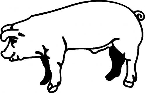 Aufkleber Applikation - Schwein - AP0466 - schwarz / 40cm