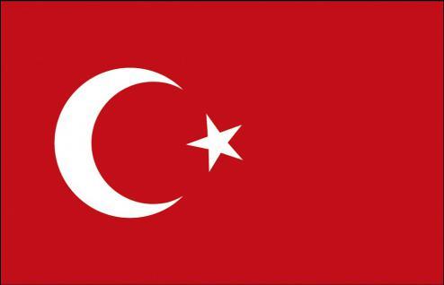 Stockländerfahne - Türkei - Gr. ca. 40x30cm - 77164 - Schwenkfahne mit Holzstock, Länder-Flagge, Dekofahne