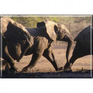 Kühlschrankmagnet - Elefant Elefantenherde - Gr. ca. 8 x 5, 5 cm - 37027 - Magnet Küchenmagnet - Vorschau 1