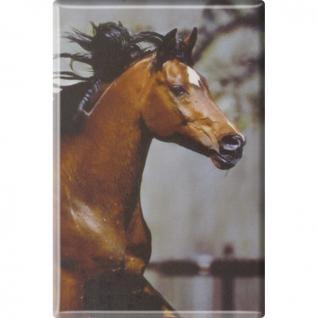(38481-1) MAGNET - Pferde - Gr. ca. 8 x 5, 5 cm - 38481 - Küchenmagnet