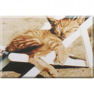 Kühlschrankmagnet - Katze Kätzchen - Gr. ca. 8 x 5, 5 cm - 38428 - Magnet Küchenmagnet