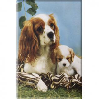TIERMAGNET - Hund Welpe - Gr. ca. 8 x 5, 5 cm - 38477 - Küchenmagnet