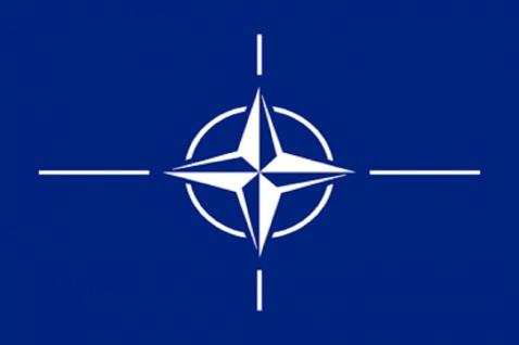 Deko-Fahne - Nato - Gr. ca. 150 x 90cm - 24405