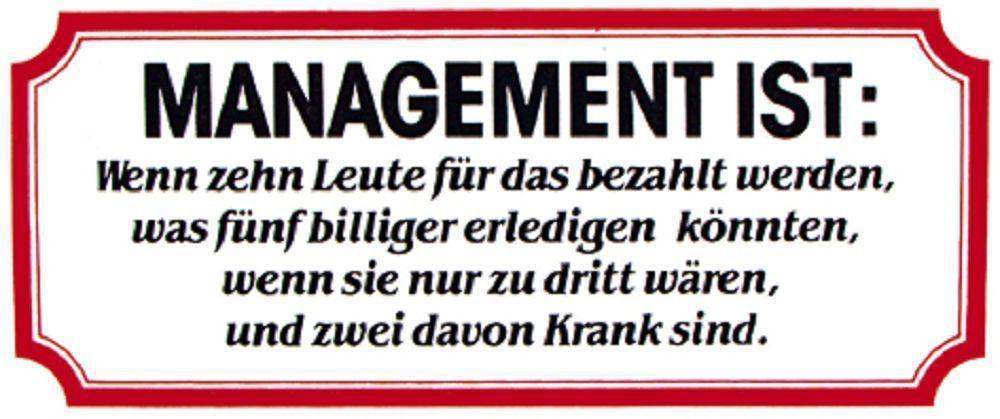 Pvc Aufkleber Fun Auto Applikation Spass Motive Und Sprüche Management Ist 303370 Gr Ca 17 X 8 Cm